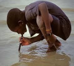 lombriz de guinea agua contaminada