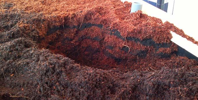 abono humus de lombriz