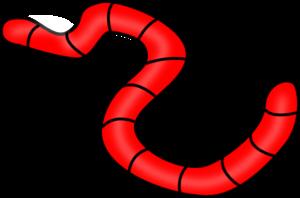 lombriz roja dibujo