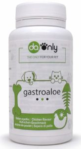mejorar salud intestinal mascota